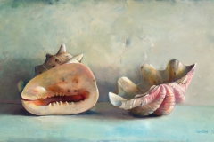 Two large shells, 60x43 cm, 2006