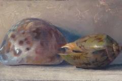 Sea Shells, 2004